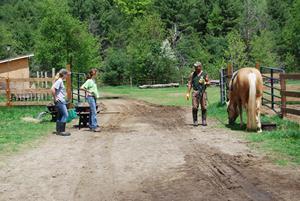 Crane Mountain Valley Horse Rescue Inc